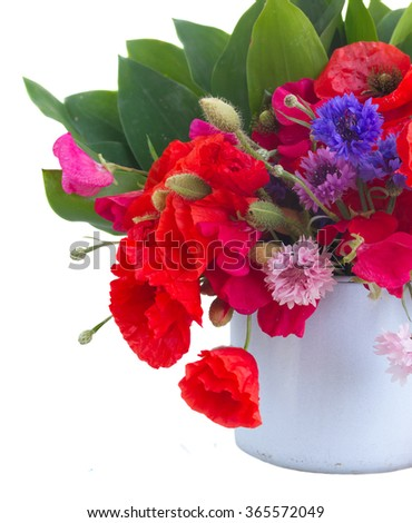 Poppy, sweet pea and corn flowers in blue  pot   isolated on white background - stock photo