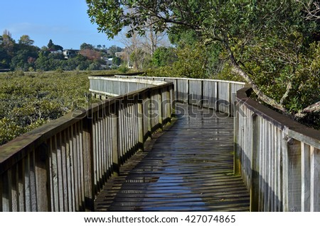Popular and spectacular harbourside wooden walkway around Hobson Bay, Remuera, Auckland, New Zealand