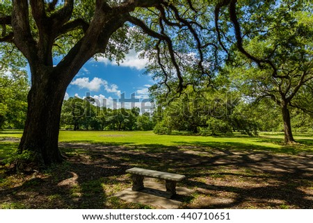 Popular Audubon Park in New Orleans, Louisiana.