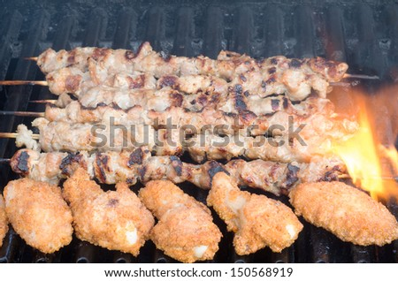 Porc skewers and chicken wings on grill - stock photo