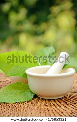 Porcelain herbal medicine grinder. - stock photo