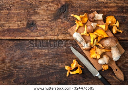 Porcini and chanterelle mushrooms on a cutting board with knife on a rustic background. Lots of copy space - stock photo