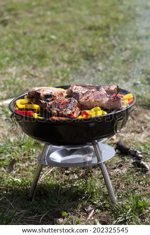 Pork and pepper on a barbecue grill at picnic - stock photo