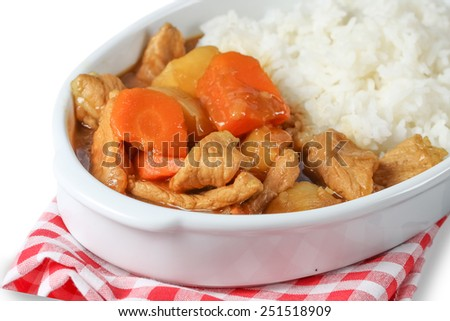 pork curry in plate on white background