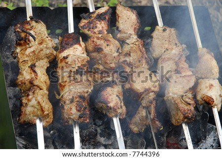 Pork kebab with onion on the BBQ 3 - stock photo
