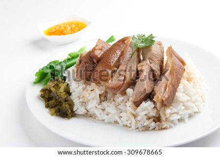 Pork Leg Stew over Rice (Kao Ka Moo) - stock photo