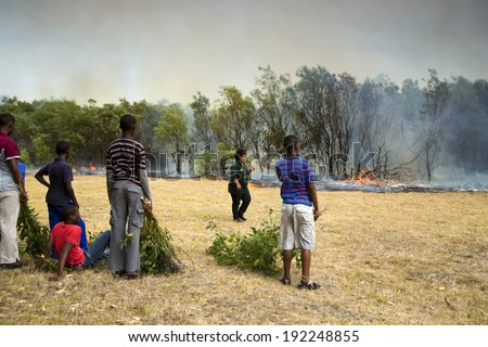 PORT ELIZABETH, SOUTH AFRICA - FEBRUARY 5, 2014 - Adults and children keeping a wildfire under control that is raging near a home for destitute adults and a children's home.