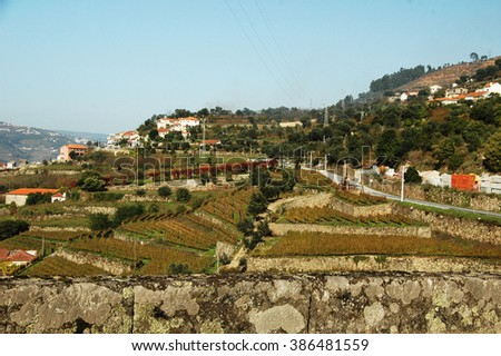 Port wine vineyards near a small town in the Douro valley, Portugal - stock photo