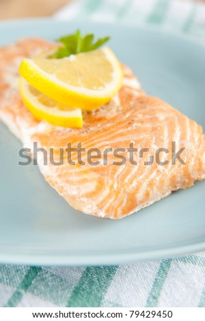 Portion of Baked Wild Caught Salmon on Plate - stock photo