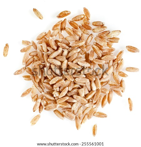 Portion of Spelt Close up top view surface isolated on pure white background - stock photo