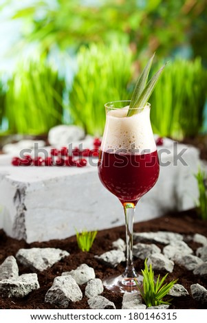 Porto and Berry Cocktail - stock photo