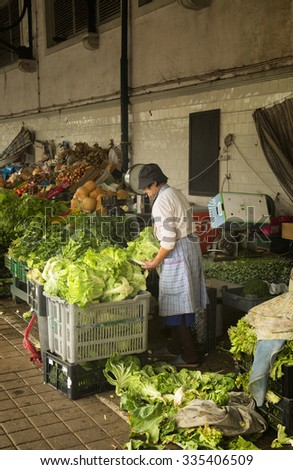 PORTO-PORTUGAL NOVEMBER 4, 2015: Old woman cutting and preparing lettuce in a market in Porto, Portugal