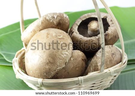 Portobello mushroom in a bamboo basket - stock photo