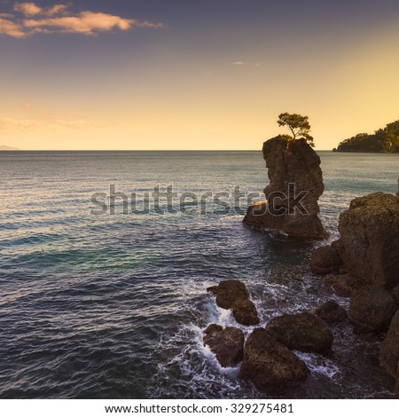 Portofino natural regional park. Lonely pine tree rock and coastal cliff beach on sunset. Ligury, Italy - stock photo