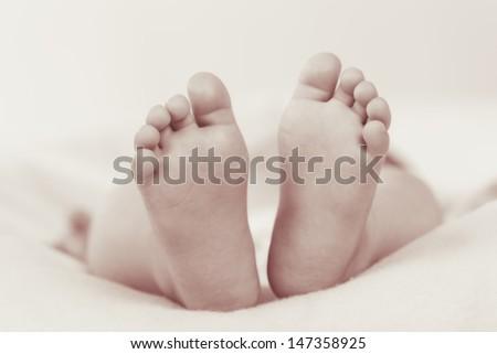 portrait baby feet - stock photo