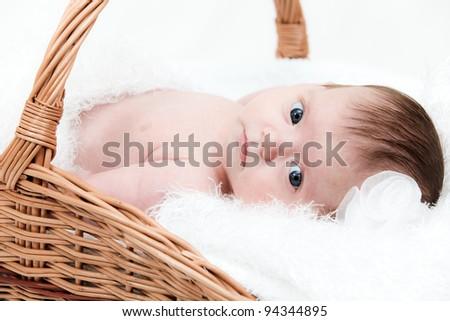 Portrait newborn baby in basket - stock photo