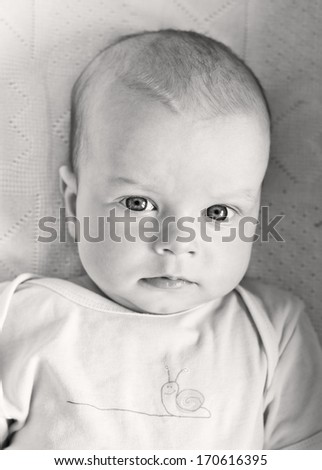 portrait of a beautiful baby boy ( black and white ) - stock photo