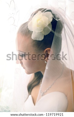 Portrait of a beautiful bride closed veil - stock photo