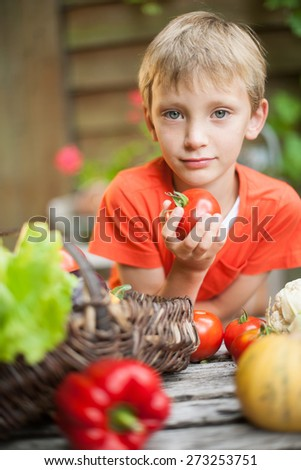 Portrait of a beautiful young boy holding fresh vegetables at the garden table - stock photo