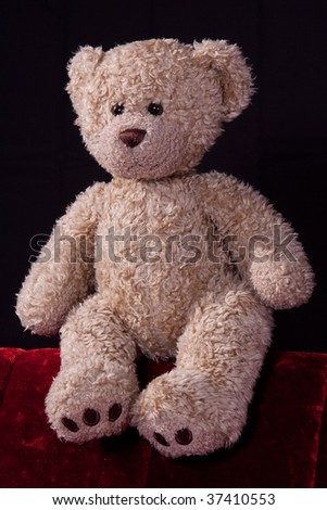 Portrait of a brown teddy bear - stock photo