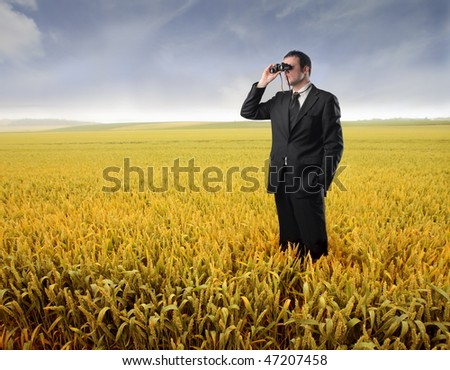 Portrait of a businessman standing on a cornfield and using a pair of binoculars - stock photo
