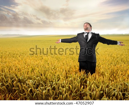 Portrait of a businessman standing with open arms in a cornfield - stock photo