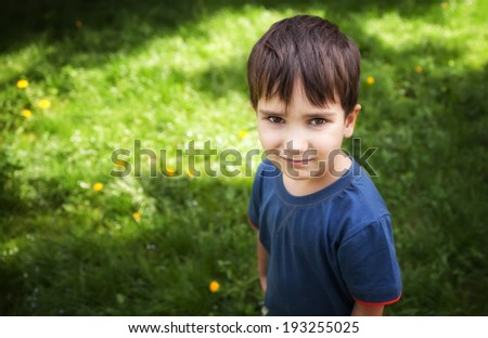 Portrait of a cute boy standing against green grass background - stock photo