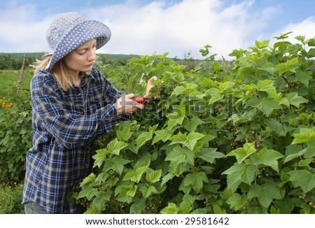 Portrait of a farmer. - stock photo
