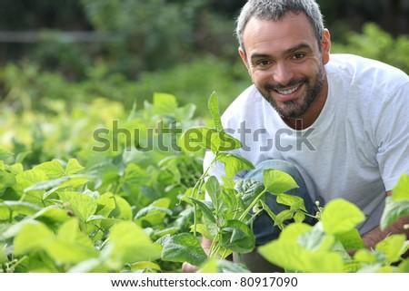 portrait of a farmer - stock photo