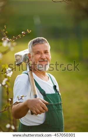 Portrait of a handsome senior man gardening in his garden, on a lovely spring day (color toned image) - stock photo