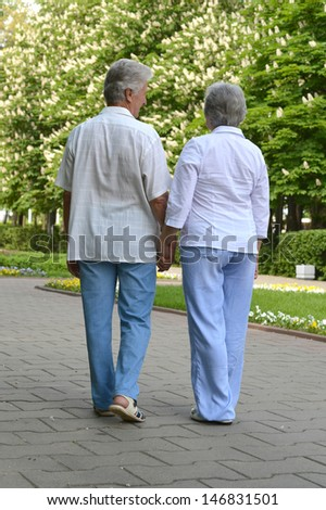 portrait of a happy elderly couple on a walk in the park in spring
