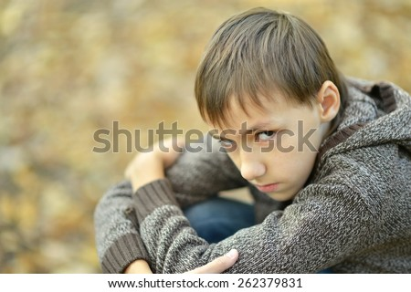 Portrait of a happy little sad boy in autumn park - stock photo