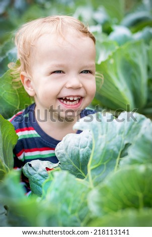 portrait of a happy toddler boy in cabbage