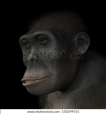 Portrait of a Homo Habilis, a species related to modern humans and the first hominid to use tools. Homo Habilis existed between 1.5 and 2 million years ago. 3d render with digital painting.  - stock photo