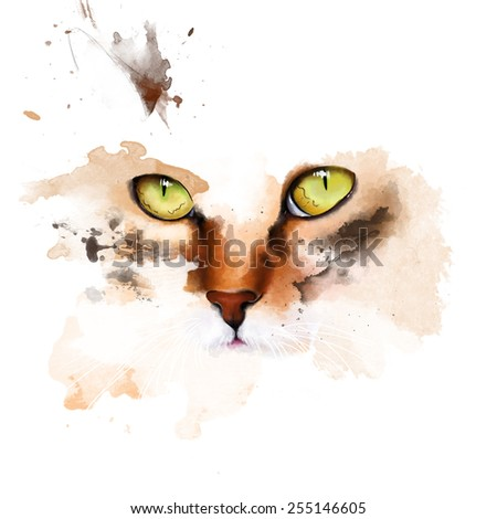 Portrait of a kitten isolated on white background, sketch - stock photo