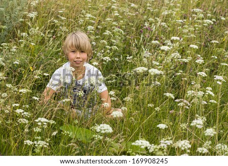 Portrait of a little boy with a bouquet of wildflowers, walking on summer field. - stock photo