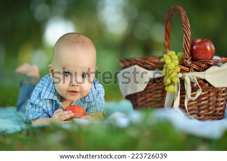Portrait of a little happy boy  at the picnic - stock photo