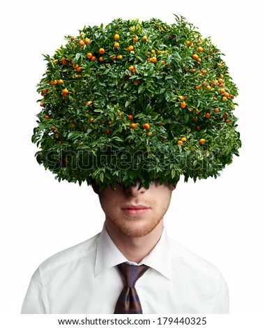 Portrait of a man with tangerine tree instead hair - stock photo