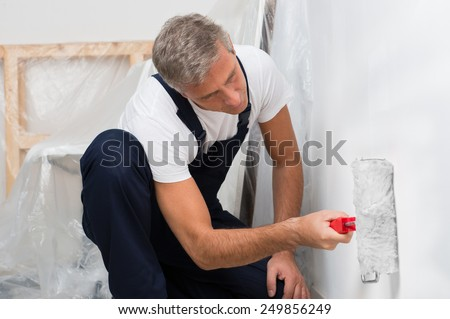 Portrait Of A Mature Man On Painting Wall With Roller - stock photo