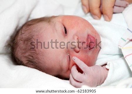 Portrait of a newborn baby girl, one hour old