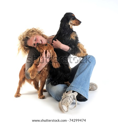 portrait of a  purebred english cockers and woman in a studio - stock photo