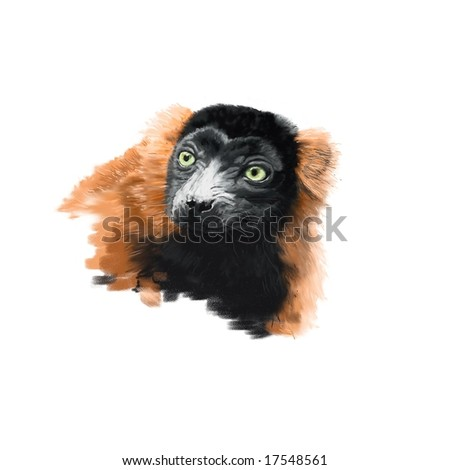Portrait of a Red Ruffed Lemur (Varecia variegata ruber). Genuine high resolution digital artwork suitable for print. Not a scan! - stock photo