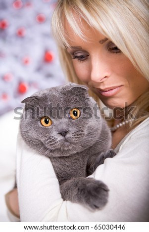 portrait of a Scottish shorthair cat and a woman at the Christmas tree