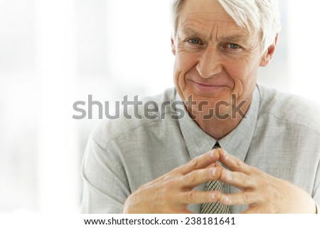 Portrait of a senior businessman - stock photo