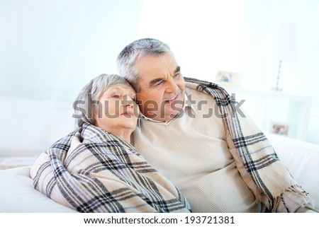 Portrait of a senior couple wrapped in plaid - stock photo