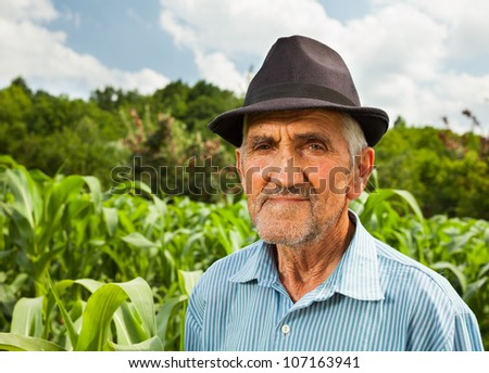 Portrait of a senior farmer with a corn field in the background, selective focus - stock photo