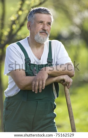 portrait of a senior gardener in his garden/orchard (color toned image)