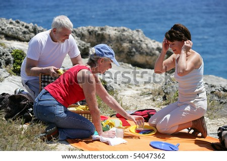 Portrait of a senior group picnicking on the seafront - stock photo