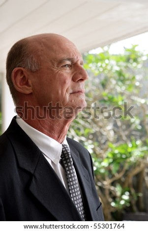 Portrait of a senior man in suit - stock photo
