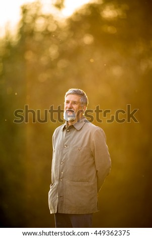 Portrait of a senior man outdoors, walking in a park, full lenght portrait (shallow DOF; color toned image) - stock photo